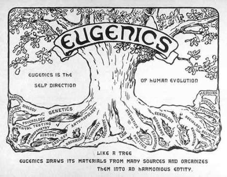 EugenicsTreeUSlg